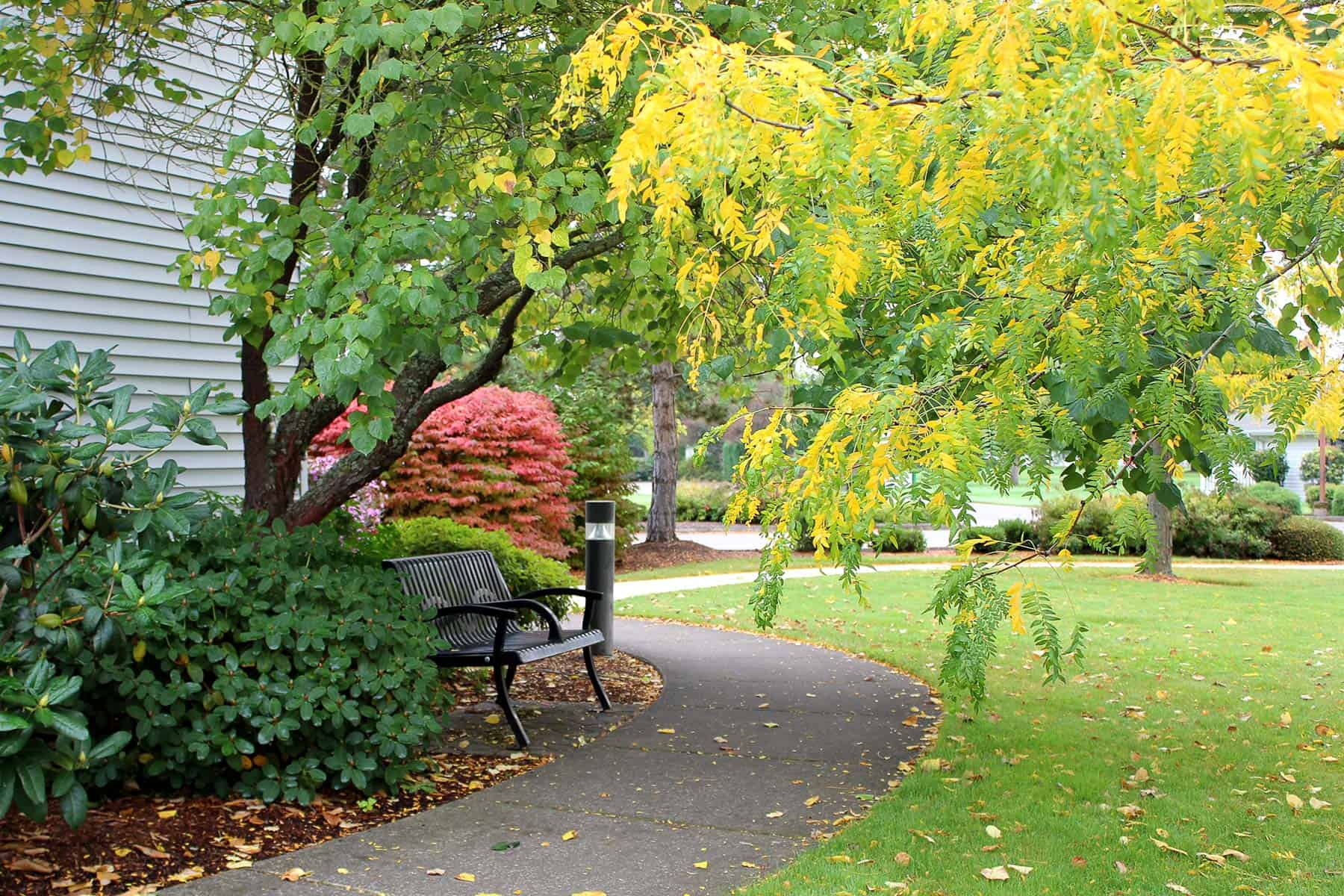 Park with All the Facilities for Seniors at Mennonite Village