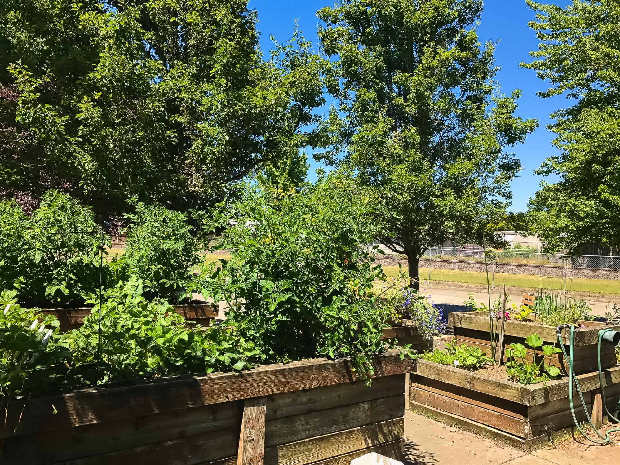 Gardens at Mennonite Village